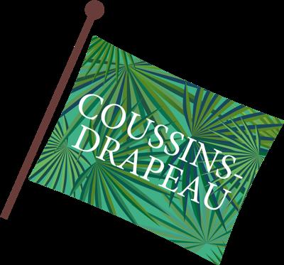 coussins-drapeau